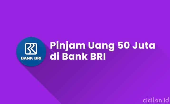 Pinjam Uang 50 Juta di Bank BRI